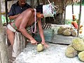 Orang Asli bei der Zubereitung einer Durian (2874318755).jpg