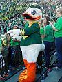 Oregon Duck 2016.jpg