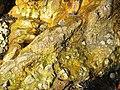Orphir Bay breccia pipe.jpg