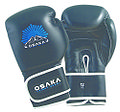 Osaka Fight Gear Muay Thai Gloves.jpg