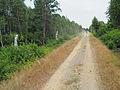 Ostenholzer Moor Fahrdamm.JPG