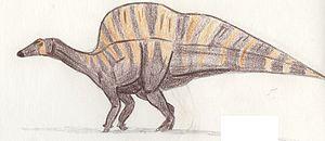 1976 in paleontology - Ouranosaurus