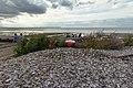 Oyster shells in Whitstable.jpg
