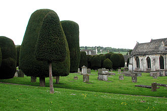 Painswick - The St Mary's Parish churchyard is notable for its ancient and numerous yew trees.