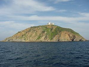 Palmaiola - Palmaiola island and the lighthouse