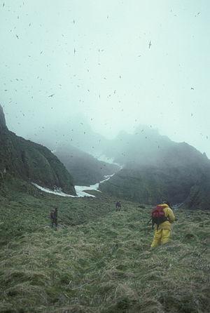 Chagulak Island - Image: Panoramic view of Chagulak Island field crew in 1990