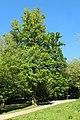Parc de la Grande Maison à Bures-sur-Yvette le 9 mai 2017 - 66.jpg