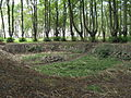 Park Dranske-Lancken - Senke 5.JPG