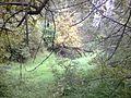 Park Młociński - panoramio.jpg