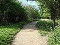Parkland Walk - geograph.org.uk - 1593105.jpg