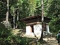 Paro Taktsang, Taktsang Palphug Monastery, Tiger's Nest -views from the trekking path- during LGFC - Bhutan 2019 (316).jpg