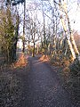 Path on Silchester Common - geograph.org.uk - 1750459.jpg