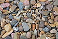 Pebbles on beach at Broulee -NSW -Australia-2Jan2009.jpg
