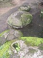 Pedras nos Jardins do Museu Nacional.jpg