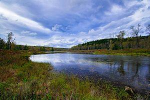 Blackwater Falls State Park - Pendleton Lake at BFSP