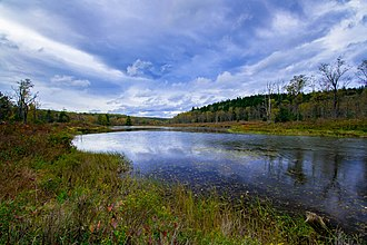 Blackwater Falls State Park - Pendleton Lake at BFSP