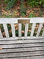 Photograph of a bench (OpenBenches 175).jpg
