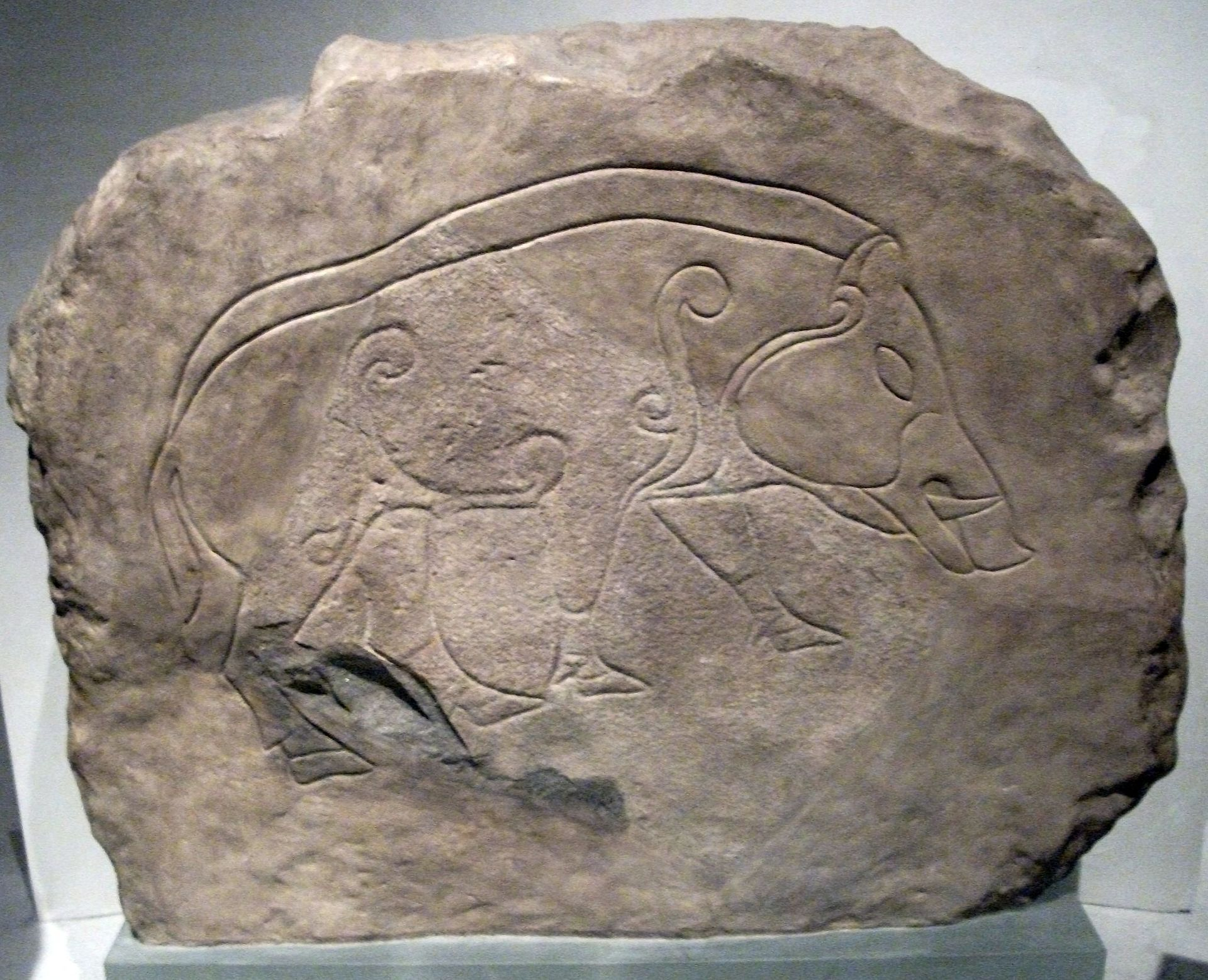 1920px-Pictish_Stones_in_the_Museum_of_S