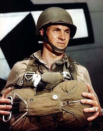 Maidenform - A Pigeon Bra in use by WW II soldier