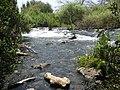 PikiWiki Israel 16981 Dan stream.JPG