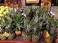 Pineapple 1 2013-10-24.jpg