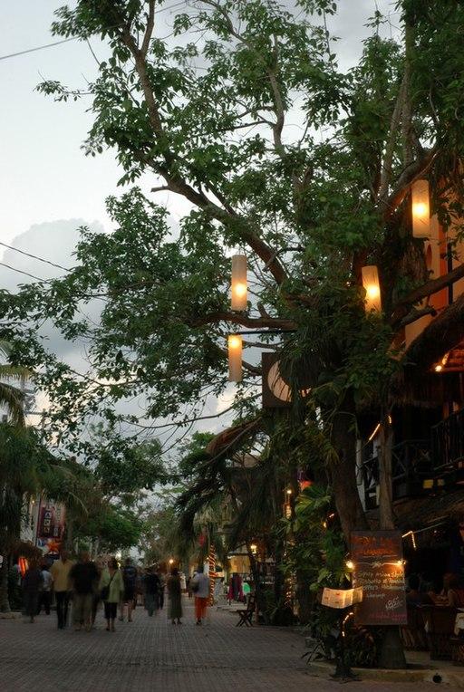 Playa del Carmen, 5ta Avenida, Quintana Roo- 5th Street, Quintana Roo (24105289540)