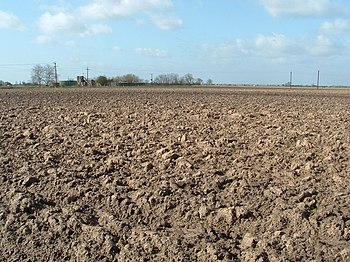 English: Ploughed now weathering Waiting for t...