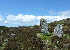 Pobull Fhinn - Pobull Fhinn from the east. The second stone on the right is the highest one with a height of two meters.