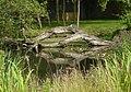 Pond in the village gardens - geograph.org.uk - 1424477.jpg