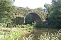 Ponte medieval Tea Salvaterra.jpg