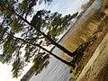Priedes - panoramio (2).jpg