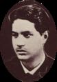 Prince Hinoi, La Famille Royale de Tahiti, Te Papa Tongarewa.png