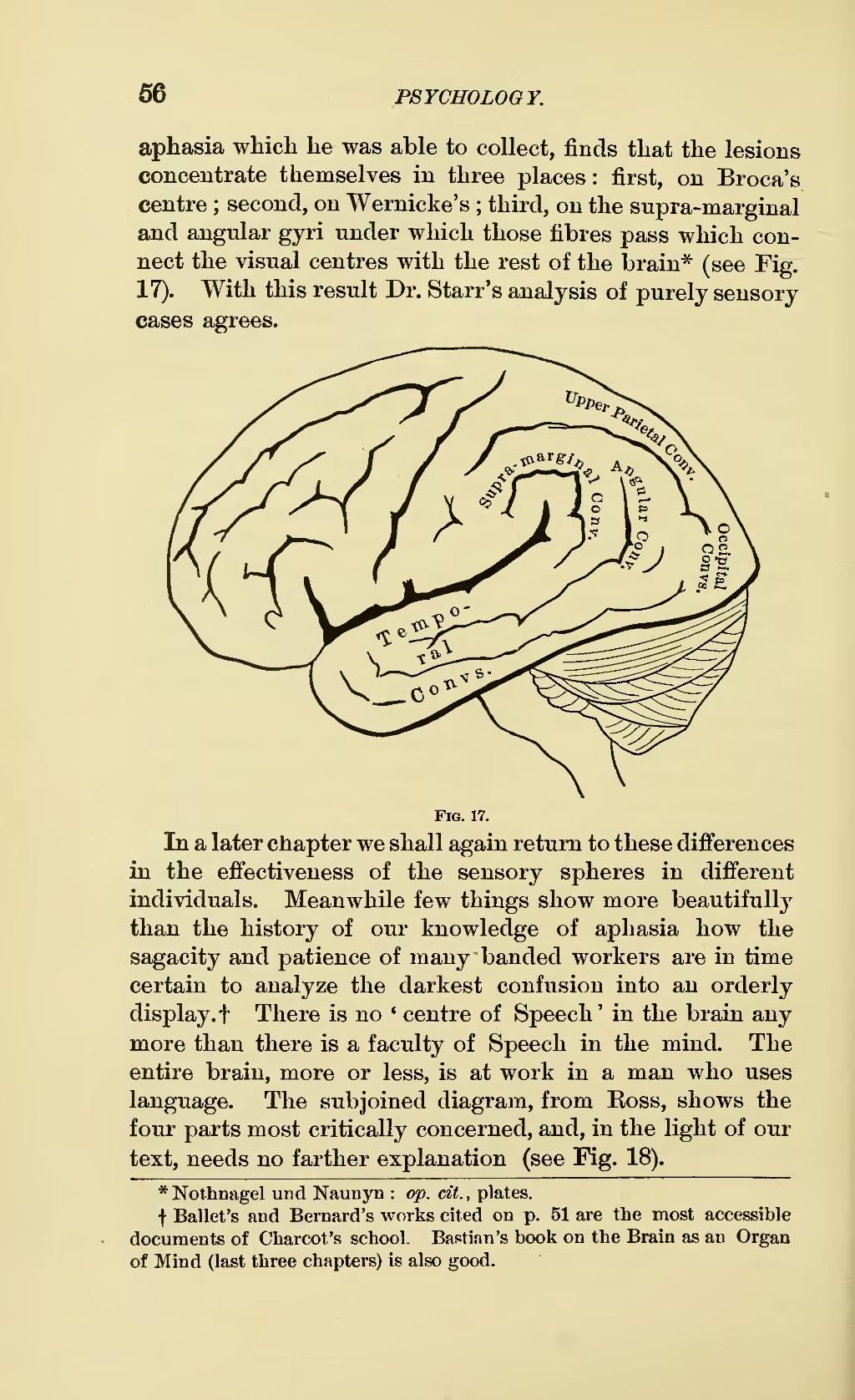 Page Principles Of Psychology 1890 V1 Djvu 76 Wikisource