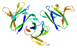 Protein PRKAB1 PDB 1z0m.png