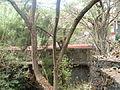 Puente del Diablo 1.JPG