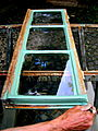 Pure linseed oil paint on historical windows..JPG