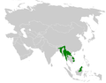 Pycnonotus flavescens distribution map.png