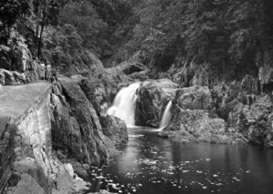 Crystal Cascades - Image: Queensland State Archives 1217 Crystal Cascade Freshwater Valley source of Cairnss water supply c 1935