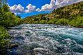 Río Chimehuin Neuquen - Argentina.jpg