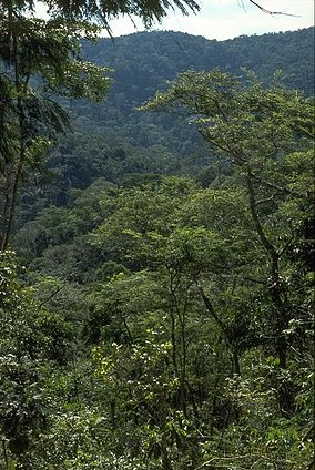 Feliciano Miguel Abdala Private Natural Heritage Reserve