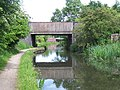Railway Bridge - Wyrley and Essington Canal - geograph.org.uk - 906414.jpg
