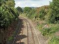 Railway near Lazonby - geograph.org.uk - 212993.jpg