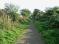 Railway path, Sandysike - geograph.org.uk - 248367.jpg