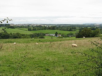 Pasture - Red Hill Farm and fields sheep pasture at Bredenbury, Herefordshire, England