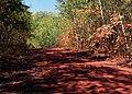 Red Road (244484297).jpg