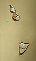 Relief Fragments from a Large Figure of Mentuhotep II MET 26.3.354-8 1731.jpg