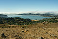 Richardson Bay as seen from Ring Mountain.jpg