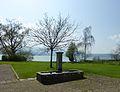 Ritterhaus Park.jpg