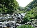 River Lyn - geograph.org.uk - 723741.jpg
