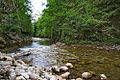 River Mali Rzav and Visocka Banja Spa in Serbia - 4283.NEF 05.jpg